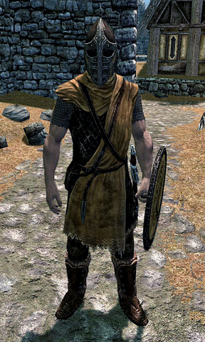 File:Whiterun Hold Guard Skyrim.png
