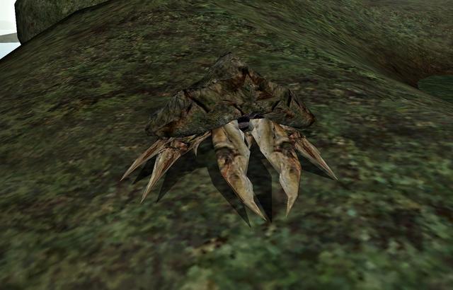File:Mudcrab (Morrowind).png