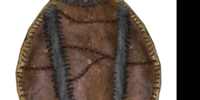Fur Shield (Oblivion)