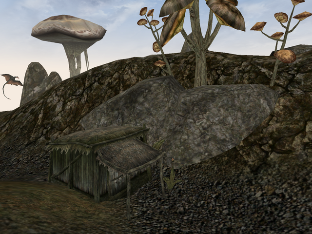 File:Big Head's Shack Morrowind Exterior View.png