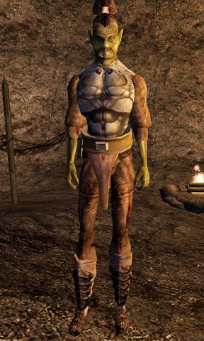 File:Agrob gra-Bogharz - Morrowind.png