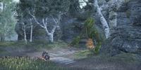 Newt Cave (Online)