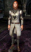 Kvatch Cuirass Hero
