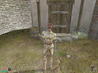 Morrowind123-Courtyard 640x480