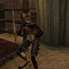 Khajiit odmiany Suthay-raht w TES III: Morrowind