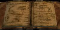 Elante's Notes
