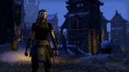 Nord in Eastmarch