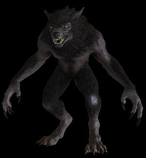 Lycanthropy (Skyrim) | Elder Scrolls | FANDOM powered by Wikia