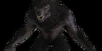 Werewolf (Skyrim)