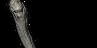 Ancient Vampire Leg