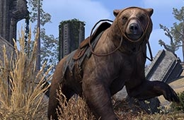 File:Cave Bear Mount.png