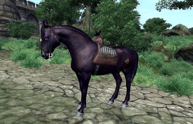 File:Black Horse.png