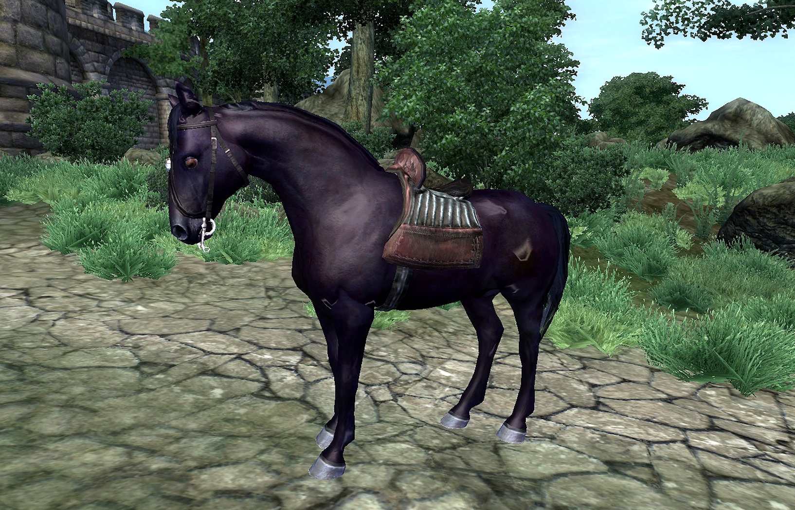 black horse | elder scrolls | fandom poweredwikia