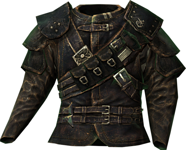 File:Guild master armor.png