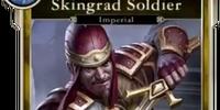 Skingrad Soldier (Legends)