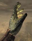 Argonian Hand