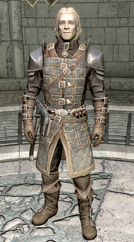 File:Agmaer Dawnguard Armor.png