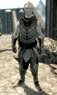 Knight Paladin Gelebor