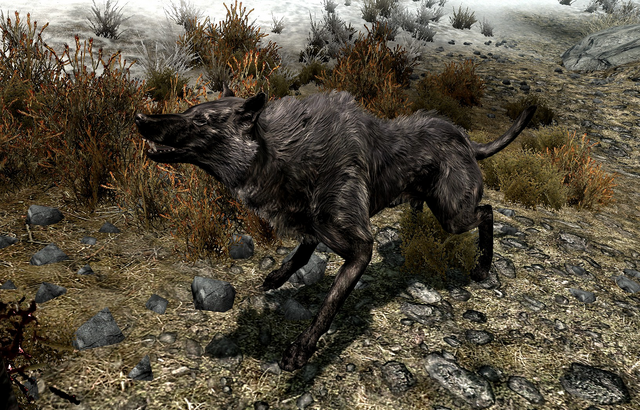 File:Pit Wolf.png