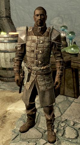 File:Florentius Dawnguard Armor.png