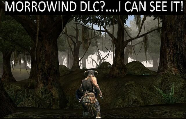 File:Morrowind DLC....jpg