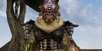 Shuzug gro-Bug