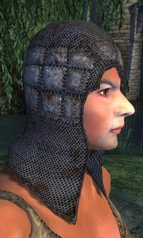 File:Chainmail HelmetWhenWorn.png