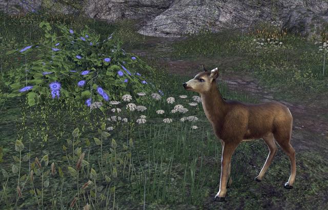 File:Deer (Online).png
