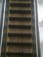 Historic OTIS Wooden Steps Escalator (Town Hall Station, Sydney 2)