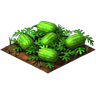 Crop Watermelon Grown SW icon