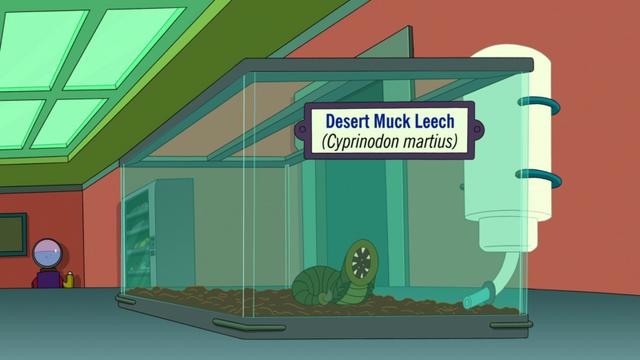 File:Desert Muck Leech.png