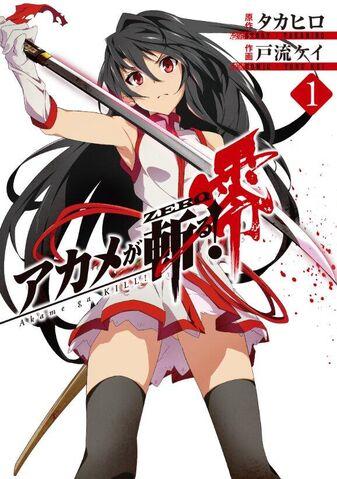 File:Akame ga KILL! Zero.jpg