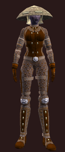 Bodyguard's (Armor Set)