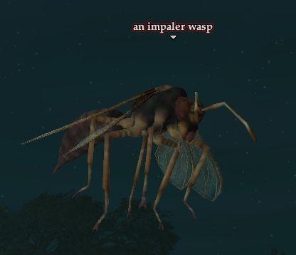 File:Impaler wasp.jpg