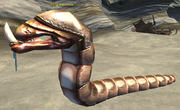 A fanged lugworm
