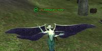 A Gloompall crone