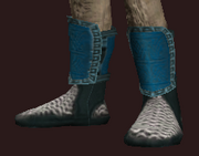 Elder's Boots (Equipped)