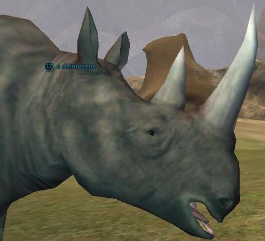 File:Rhinoceros.jpg