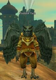 Puddin Tain