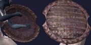 Coal Encrusted Shield (Equipped)