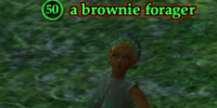 A brownie forager
