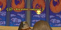 A Blacktalon coadjutant