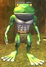 A froglok captive