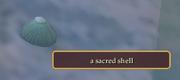 a sacred shell