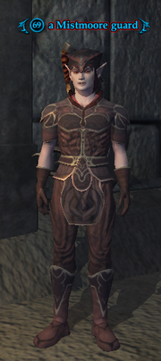 A Mistmoore guard