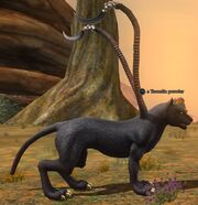A Toxxulia prowler