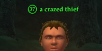 A crazed thief