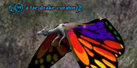A fae drake curator