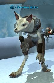 A Snowfang stalker