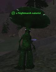 A Nightmarsh naturist